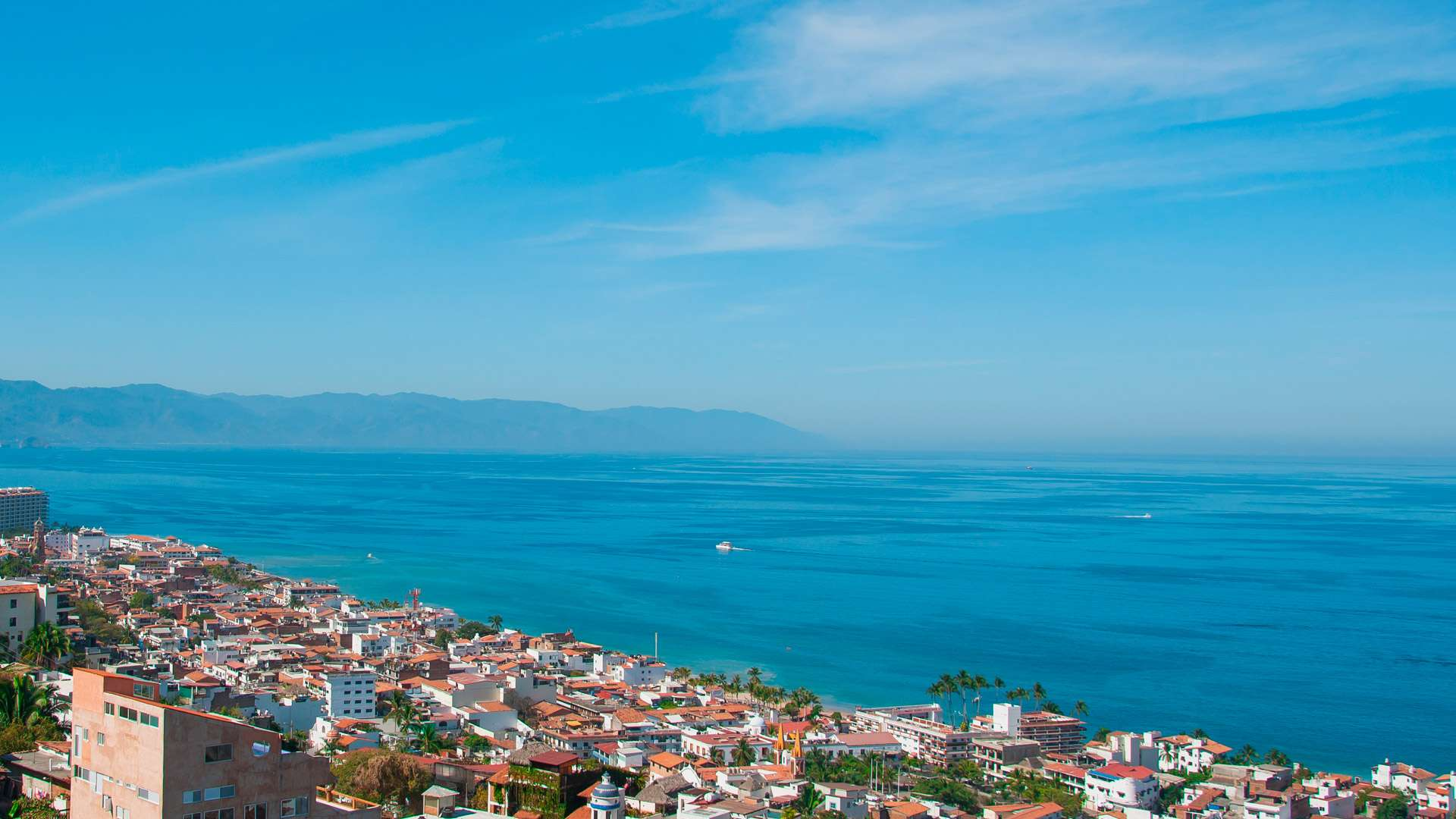 Estero El Salado Unique Things To Do In Puerto Vallarta