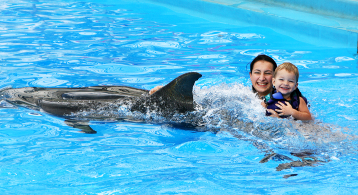 Nade Con Delfines En Aquaventuras Park